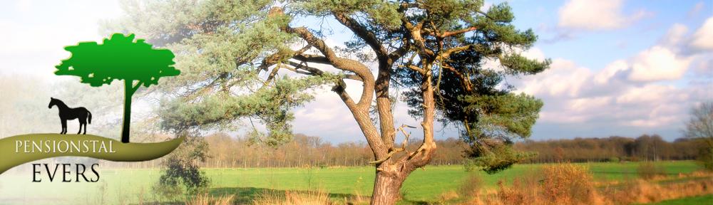 nieuwe banner boom